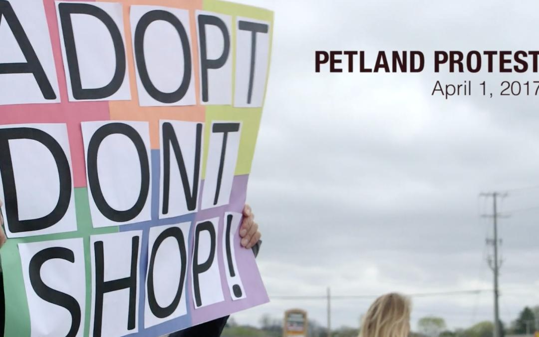 Petland Protest